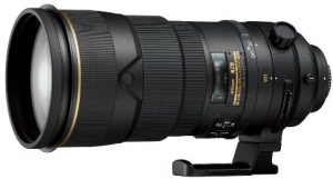 Best Nikon Lens for Wildlife Photography